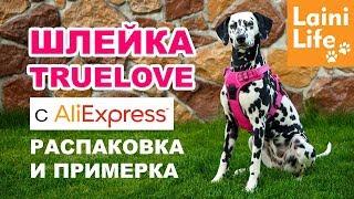 Шлейка для собаки TRUELOVE с Aliexpress