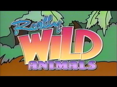 Really Wild Animals: Swinging Safari (Fair use)