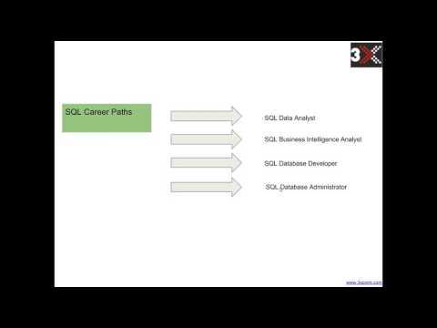 First Step to becoming a Data Guru Developer, DBA, Analyst
