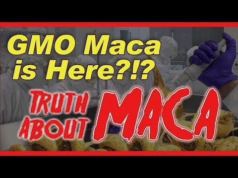 The Truth about Maca Root ** Do Not Buy Until You Watch This** LIBIDO BOOST!