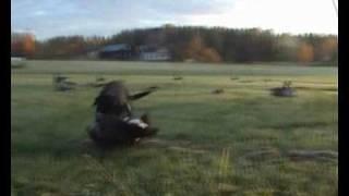 Gåsjakt  okt 2008 goose hunt