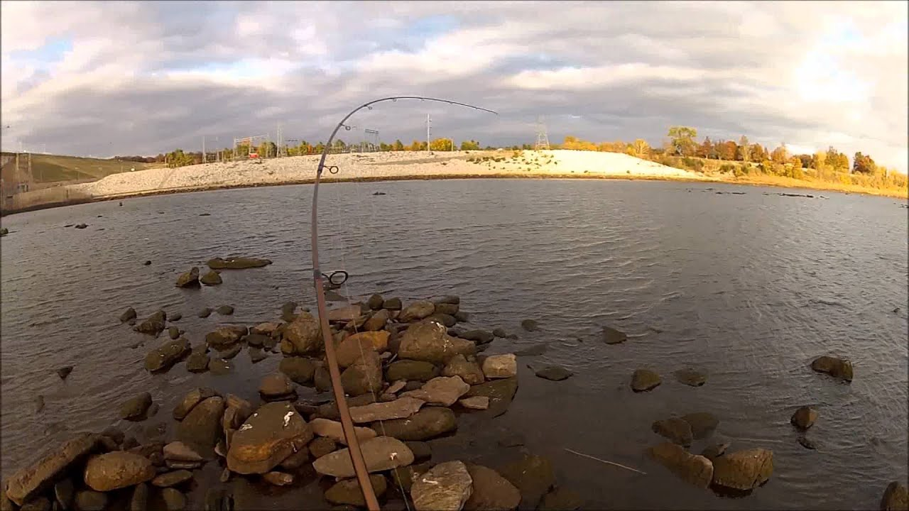 Striped bass fishing in november 247 outdoor addiction for Fishing in november
