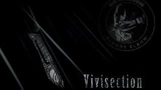 The MMA Vivisection - Bellator 144: Halsey vs. Carvalho picks, odds, & analysis