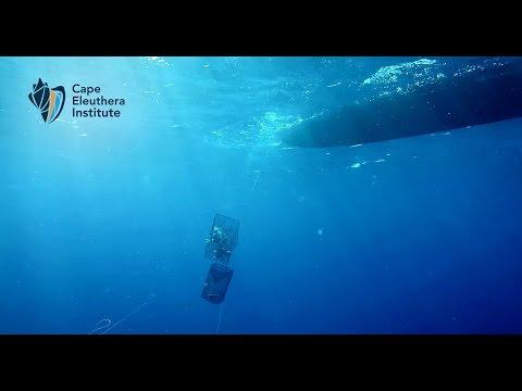 Deep Sea Research