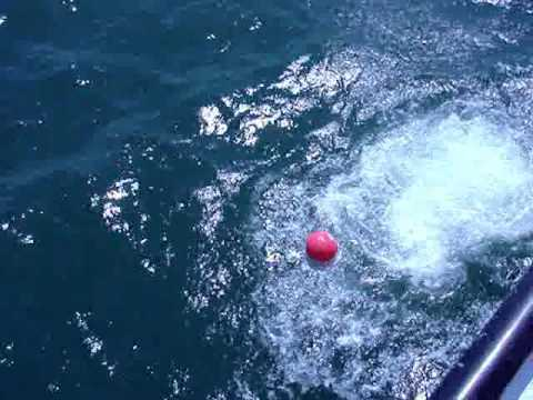 What bouy? Tender making first live boating dive.