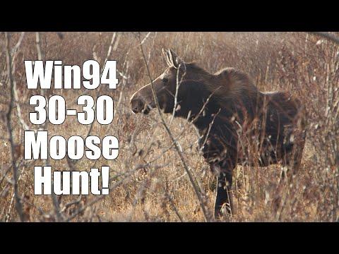 Moose Hunt! The 30-30 win94 fills the freezer.