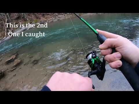 Trout Fishing The Bullpasture River