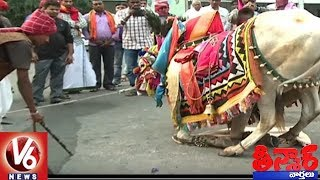 Hyderabad Police Warns Ganggiredhollu Not To Roam On Roads | Sankranthi Festival | Teenmaar News