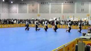 2010九州インターイベント ドッグダンス.