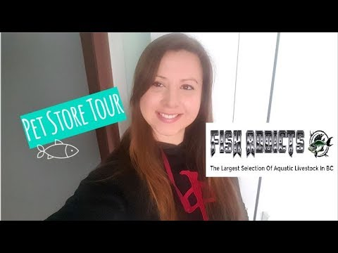 Pet Store Tour - Vancouver's Best Store For Fish! - Fish Addicts February 2019 Tour