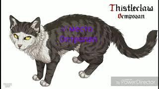 Топ 10 моих  любимых котов воителей из книги. (Это только моё мнение @-@)