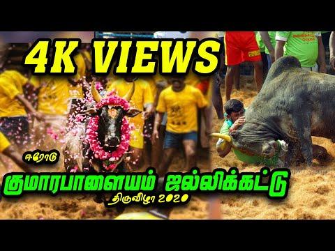 குமாரபாளையம் ஜல்லிக்கட்டு 2020 | தெறிக்கவிட்ட காளைகள் | Komrapalyam Jallikattu 2020 | Erode