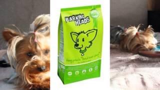 видео Выбор корма для собаки