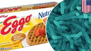 Kellogg's food poisoning scare: 10,000 cereal boxes pulled over listeria bacteria risk - TomoNews