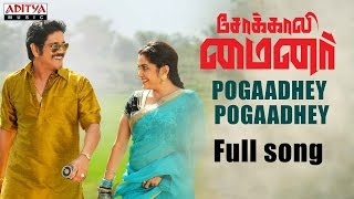 Pogadhey Pogadhey Song lyrics Video HD Sokkali Mainor Tamil Dubbed | Nagarjuna,Ramya Krishnan,Lavanya