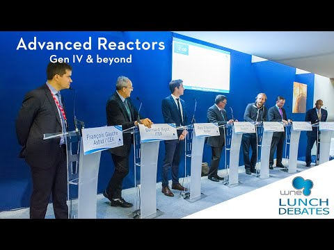 WNE 2018 - Lunch debate on Advanced Reactors, Gen IV and beyond