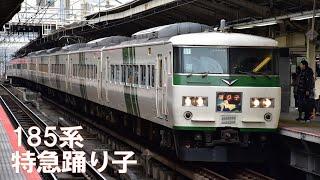 185系特急踊り子(横浜駅)