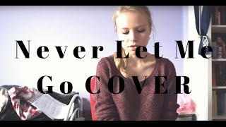 Florence and the Machine - Never Let Me Go (cover)