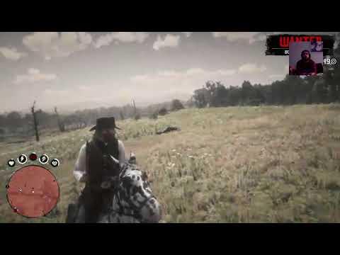 Käyttäjän Niilo22 PS4-live-lähetys RED DEAD REDEMPTION 2 Osa 15