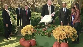 President Obama Pardons White House Turkey