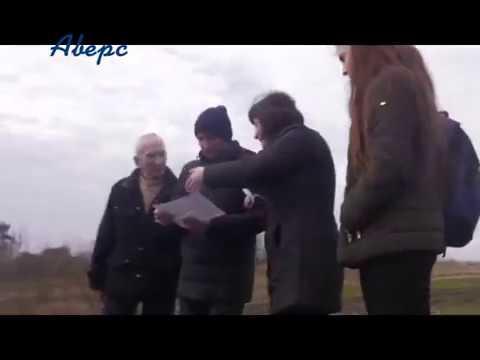 ТРК Аверс: Без документів та дозволів у Княгининівській ОТГ ліс вивозять фурами
