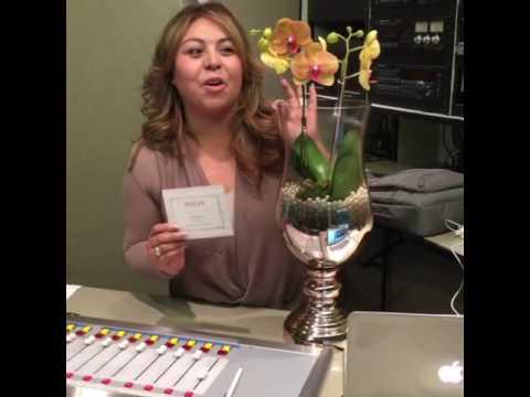 Marcela Luevano Youtube