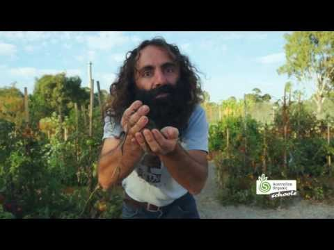 Australian Organic Schools -- Growing organic food with Costa