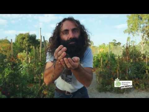 Australian Organic Schools -- Growing Organic Food With Costa