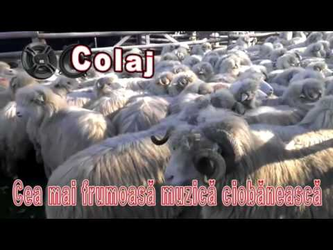 Colaj Jiene, Cea Mai Buna Muzica Ciobaneasca, 60 min
