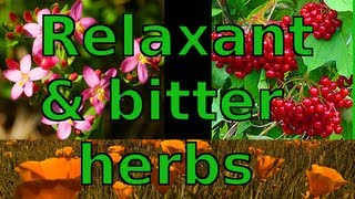 Herbal Relaxants and Bitters