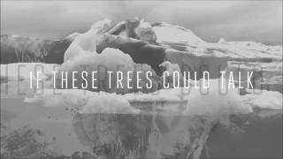 If These Trees Could Talk - Swallowing Teeth