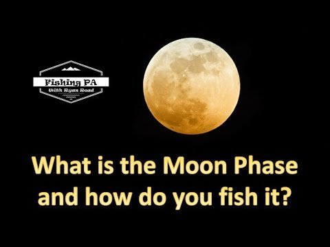 Fishing Moon Phases - Understand The Moon Phase To Catch More Fish!