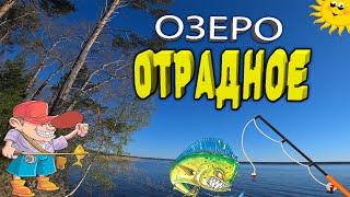 Рыбалка на озере Отрадное Ленинградская область