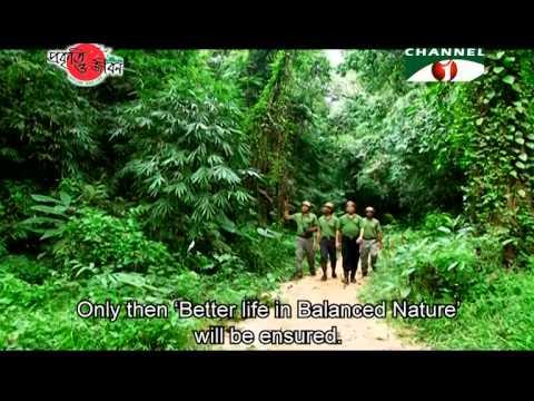 Nature and Life - Episode 171 (Endangered Mammals of Bangladesh Part 2)