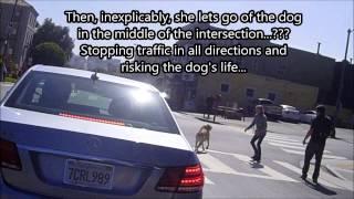 Dumb dog owner