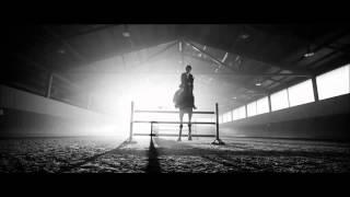 ~  Not Afraid ~ Horses ~