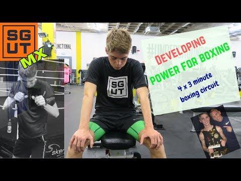 Full body Boxing circuit/Devel...
