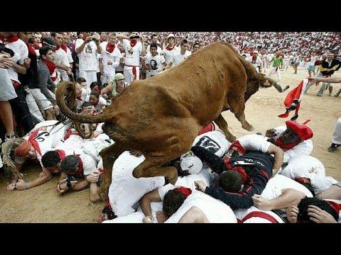 India Jallikattu Vs Spain Bulls Running