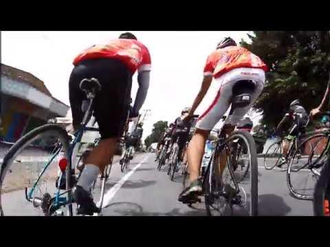 brompton vs road bike