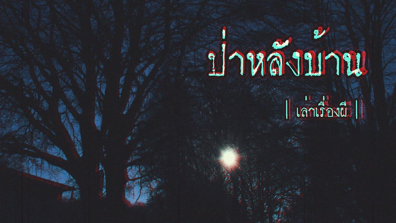 เล่าเรื่องผี EP.157 | ป่าหลังบ้าน