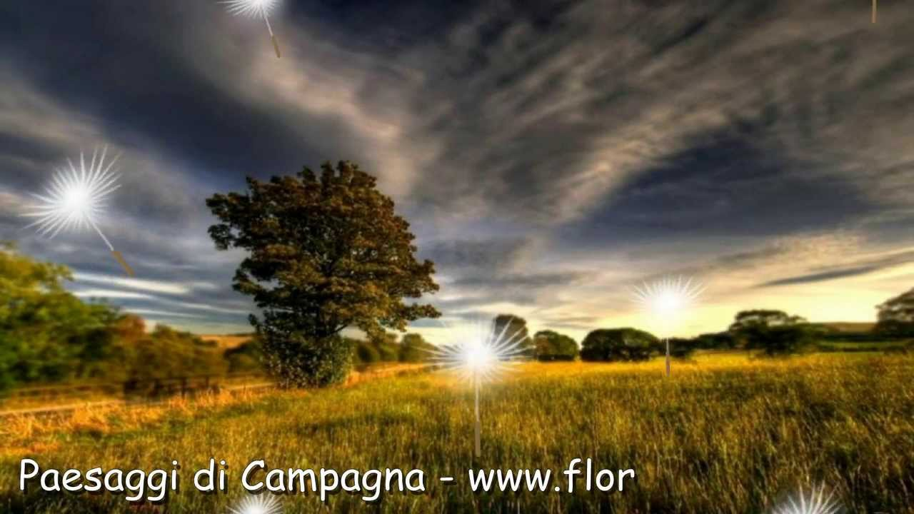 Paesaggi Di Campagna Landscapes By Flory Brown Youtube