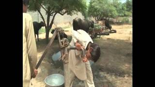 Cancer in Punjab Part1 by APS MANN July2009