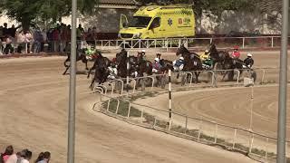 Vidéo de la course PMU PREMI TEQUILA