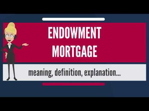 What is ENDOWMENT MORTGAGE? What does ENDOWMENT MORTGAGE mean?