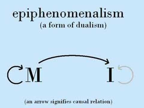 relationship between monism and dualism Dualism contrasts with monism or alternatively: what is the relationship between mental properties and physical properties humans have (or seem to have.