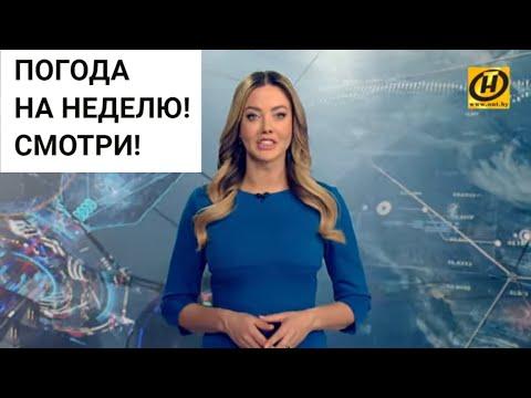 Погода на неделю 3-9 февраля 2020. Прогноз погоды. Беларусь | Метеогид