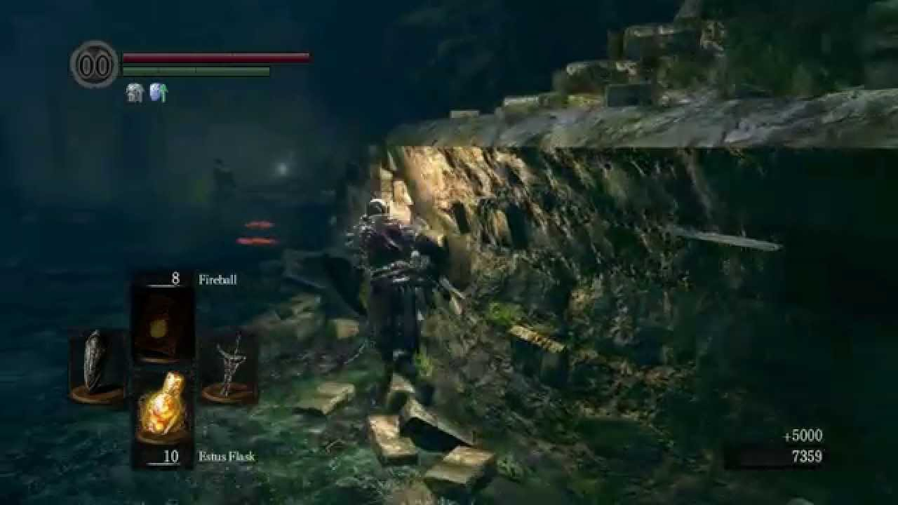 DARK SOULS easy souls in darkroot garden (exploit)