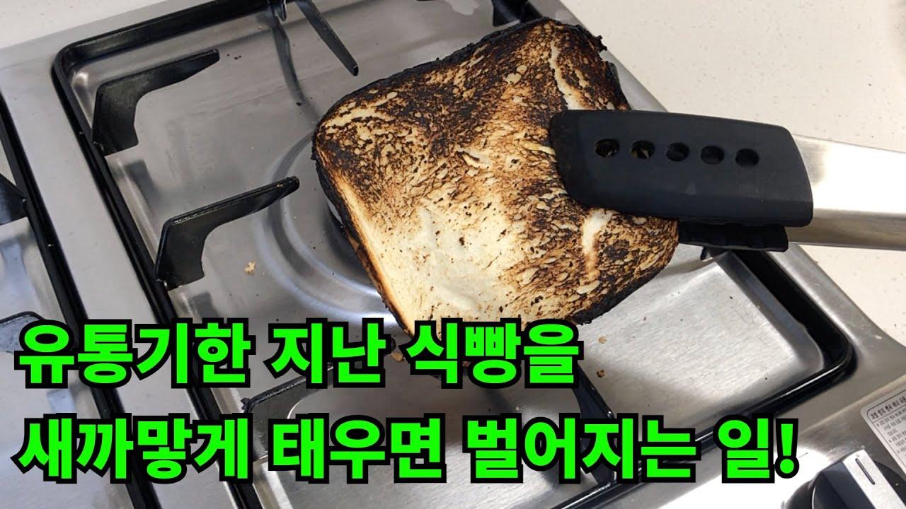 유통기한 지난 식빵을 새까맣게 태우면 벌어지는 일! / 유통기한 지난 식빵 그냥 버리지말고 태워보세요!
