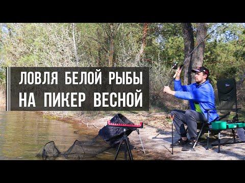 Ловля белой рыбы на пикер весной: густера, плотва, уклейка на Печенежском водохранилище
