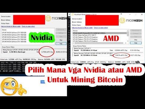 Pilih Mana Vga AMD Atau Nvidia Untuk Mining Bitcoin Saat Ini